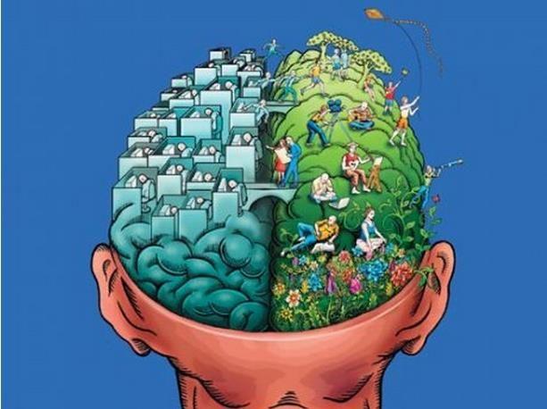 Семь способов задействовать правое полушарие мозга