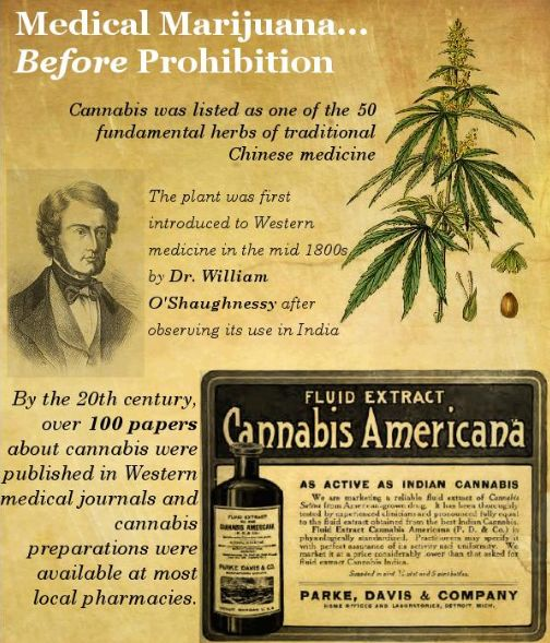 the history of the use of marijuana for medical treatment In the first decades of the 20th century, the western medical use of cannabis   begins, since treatment effectiveness and safety started to be scientifically proven.