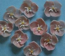 Seashell - Shell Flowers Made of Various seashell