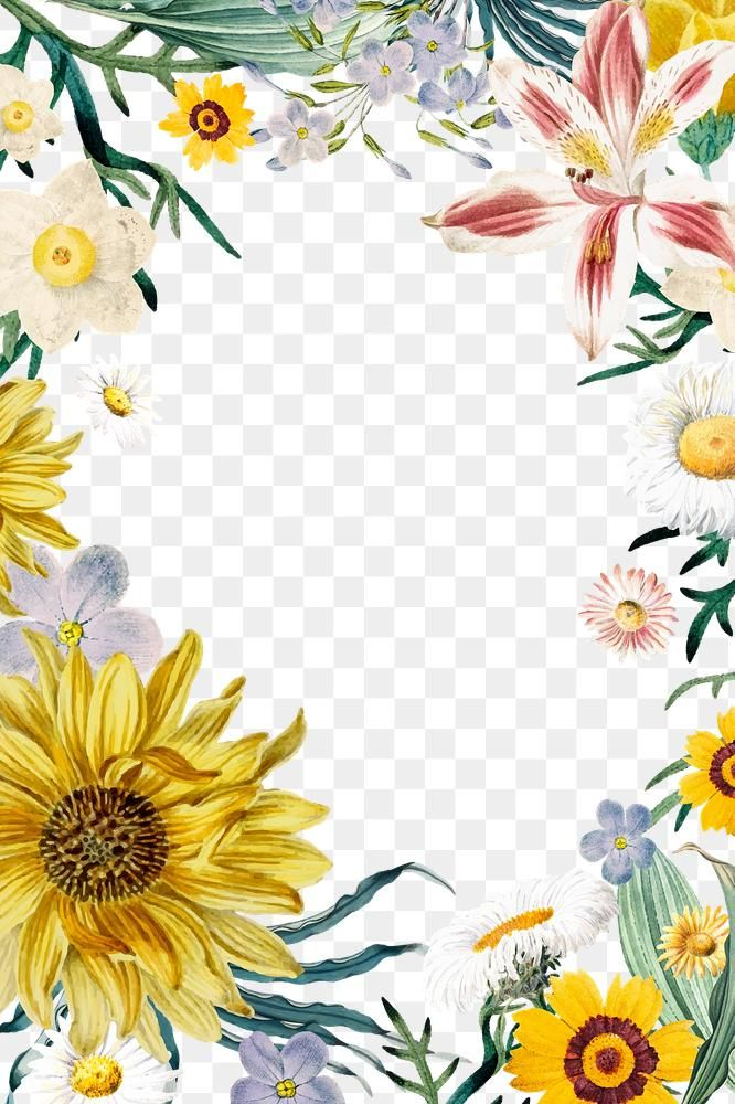 Frame With Flowers Png Summer Badge Free Image By Rawpixel Com Sasi Flower Frame Powerpoint Background Design Free Illustrations