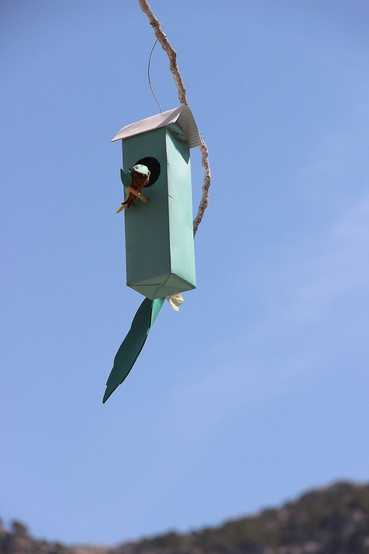 Ilmaisia Kuvia : tuuli, koriste, lento, loma-, sininen, katuvalo, valaistus, lelu, seppele, lintuja, Espanja, perinne, pesä, hautomo, lintu syöttölaite, pesimäpaikallaan, nesting box, pesintä help, festdeko, ilmapiiri earth, leija urheilu 3456x5184 -  - 491661 - Ilmainen Kuvapankki - PxHere