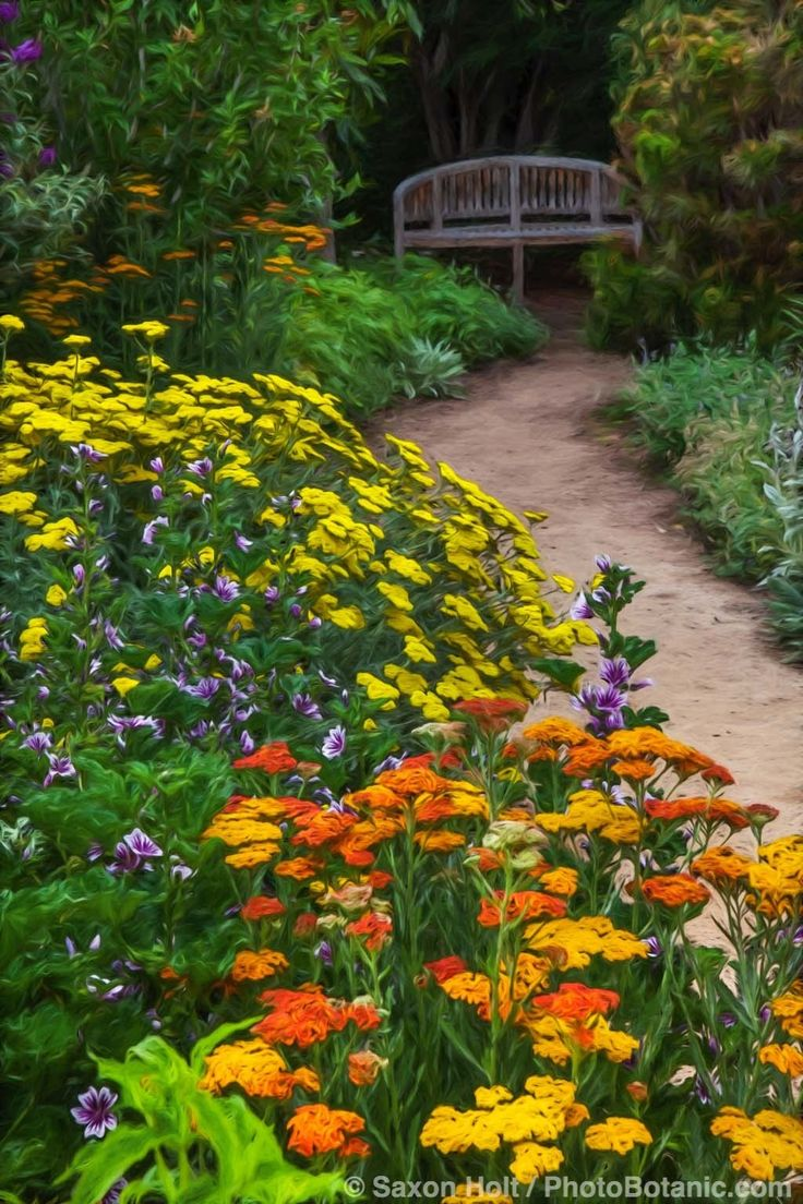 51 best ground force images on pinterest google images for Ground force garden designs