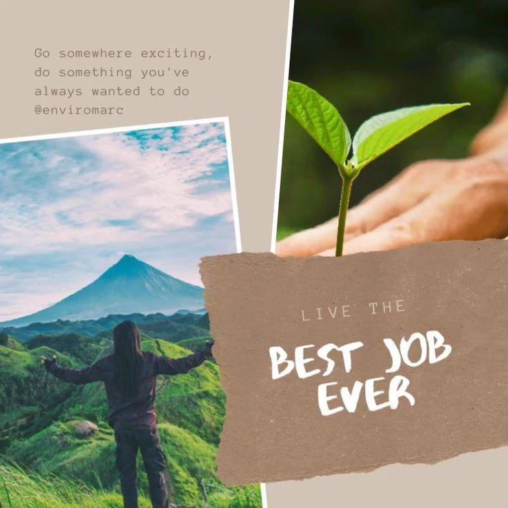 Best Job Ever 🦋🌿environmentalconsultant🐝🌼 [Video] in 2020
