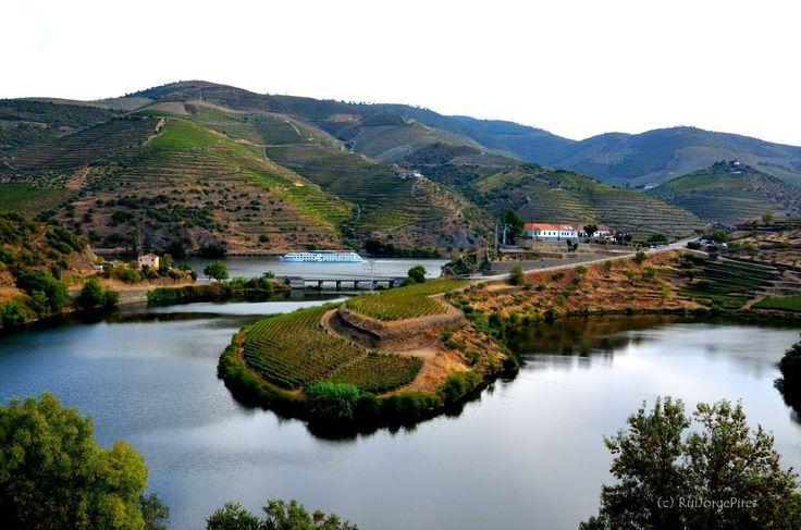 Quinta do Tedo | Enotourism | Douro Valley | Portugal