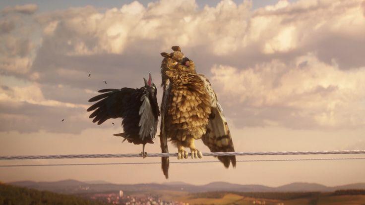 Zum Piepen : Grüner Strom bekiffte Vögel fliegende Katzen!  (Werbung)