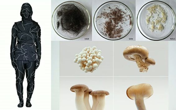 Jae Rhim Lee Invents The Mushroom Death Suit To Allow Our Bodies To Decompose Through Mushrooms Feeding Off Of Them
