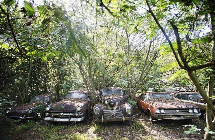 """""""The only thing I ever knew was cars and trucks,"""" said owner Walter Dean Lewis, who acquired over 4,000 classic cars. (AP Photo/David Goldman)"""