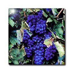 3drose Grapes Ceramic Tile, 4-Inch by 3dRose. $15.99. High gloss finish. Dimensions: 4-inch h by 4-inch w by 1/4-inch d. Image applied to the top surface. Construction grade. floor installation not recommended. Clean with mild detergent. Grapes Tile is commercial quality. Construction grade, glossy finish tiles are produced from material clays and minerals into exceptionally reliable finished products that can also be used as a decorative pieces also.