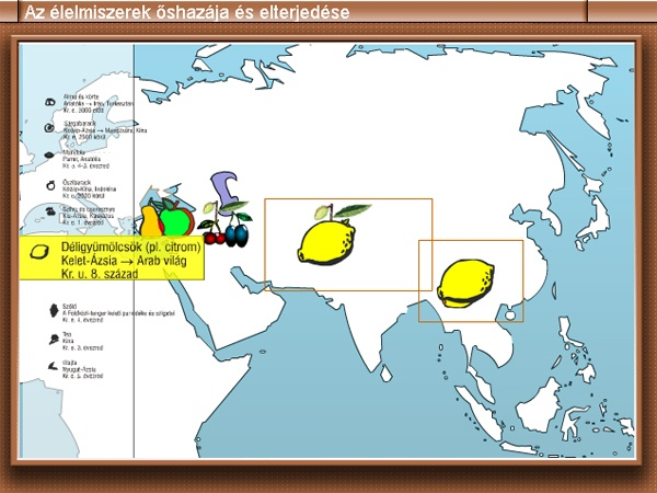 History, E-learning, animations, flash games, scientific simulations, infographics 2003
