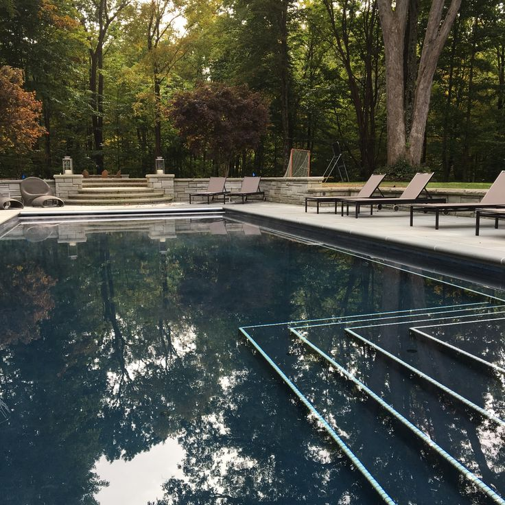 Enjoying the pool by Virginia Burt Designs Landscape Architects