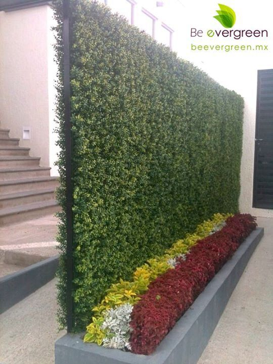 Green wall! Remate Visual
