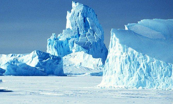 Студенты Северного (Арктического) федерального университета имени Ломоносова создали проект «умного дома» для Арктики. В конструкции использовали дерево, а гидропонная система позволит выращивать в доме съедобные растения.