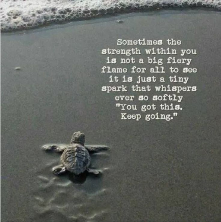 "Everything is in turtle mode and fav saying of mine my children caught onto and use is ""off like a heard of turtles""! Crohn's and fibromyalgia will do that to a person."