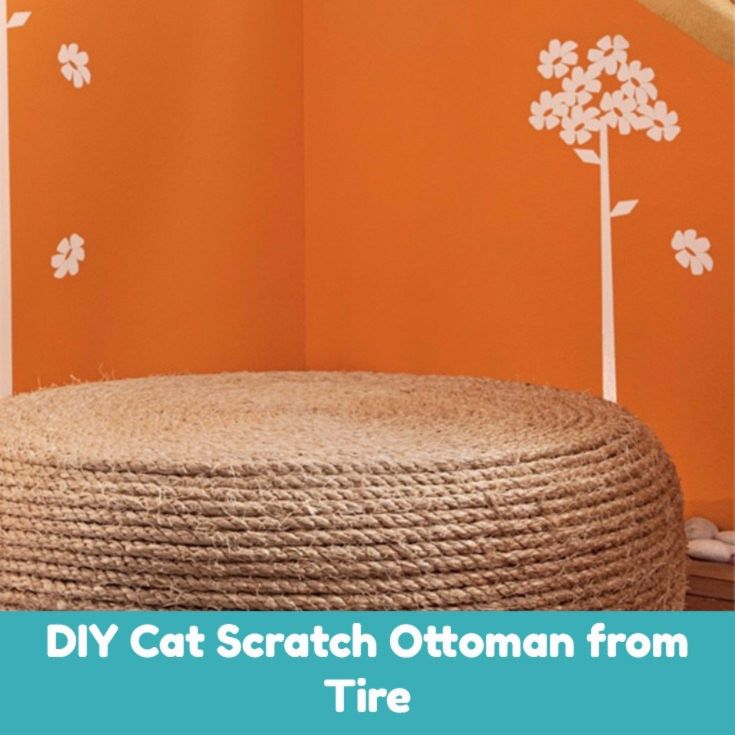 Why should the scratching post be something that cannot be used? Make a multipurpose, DIY cat scratch post with an old tire!