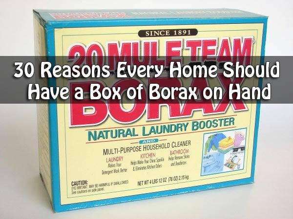 Borax, also known as sodium borate, is a mineral salt of boric acid. Commonly used in powder form, borax has a variety of uses. While it's most common use is as a laundry detergent booster, borax can also work as an anti fungal cleaning agent and is a common component of many cosmetics and paint products.