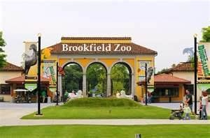 brookfield zoo memorial day 2015