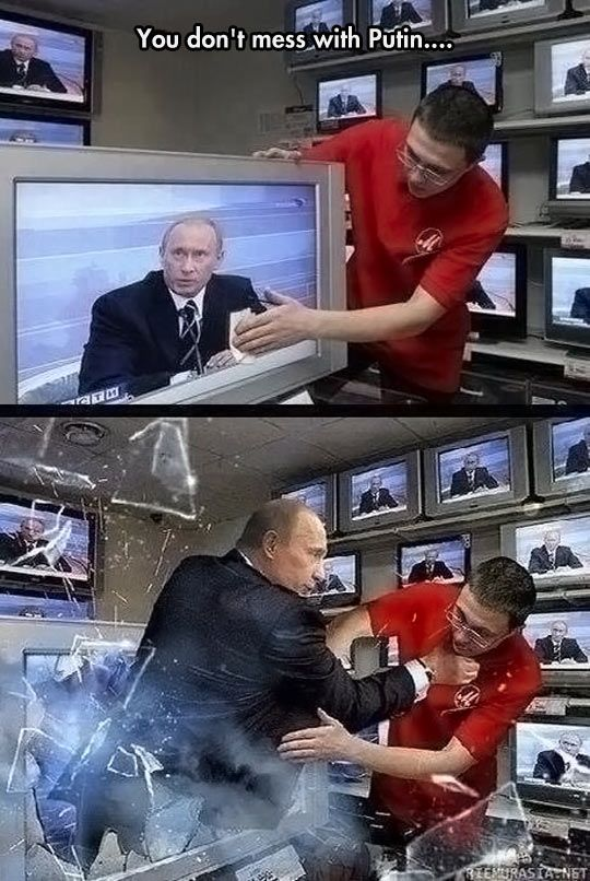 No One Messes With Putin  // funny pictures - funny photos - funny images - funny pics - funny quotes - #lol #humor #funnypictures