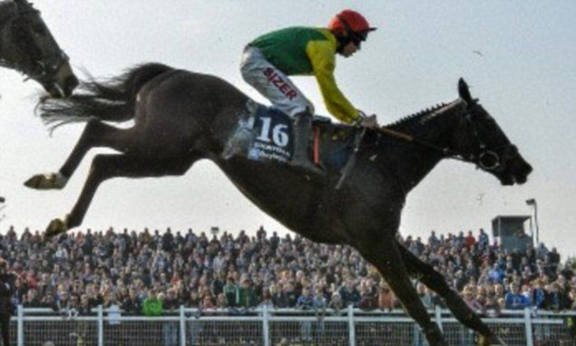 How to pick the winner of the Grand National (apparently)