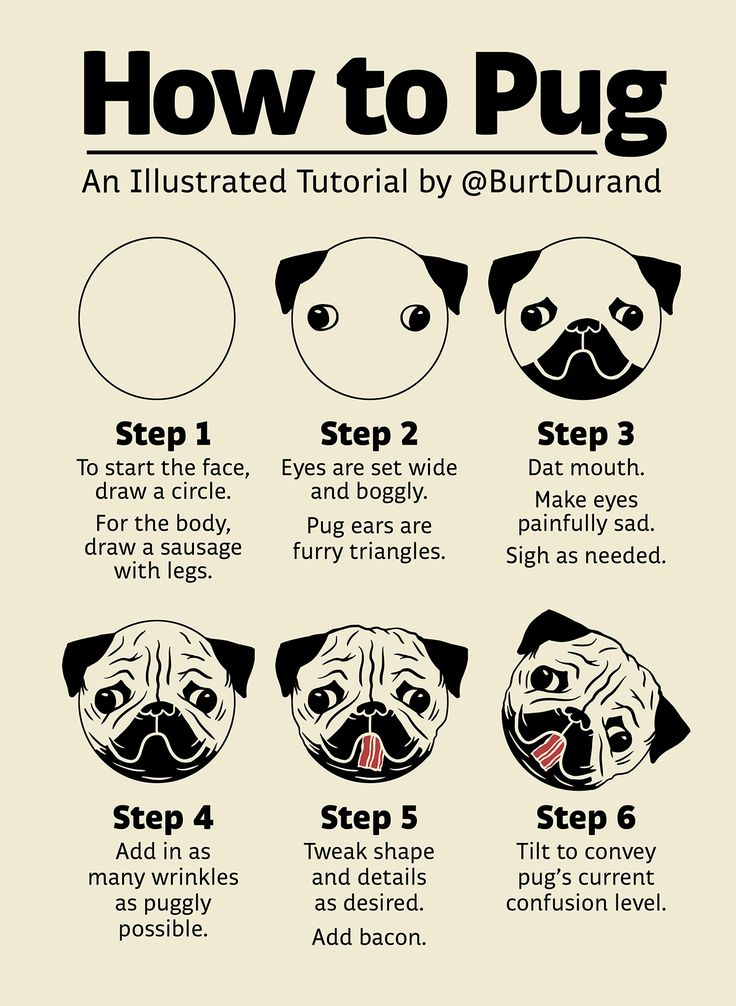 "I present to you an illustrated tutorial on ""How to Pug"" 