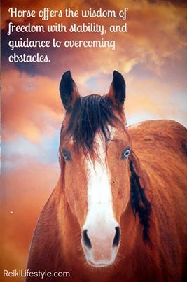 39 Best Equine Assisted Therapy Images On Pinterest