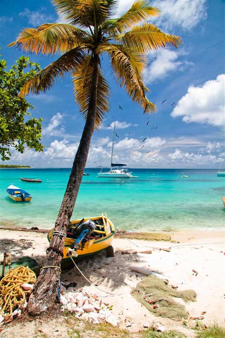 The island of Mustique, St Vincent and the Grenadines. #Caribbean