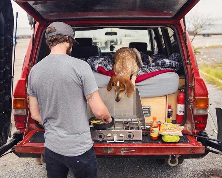 perro-maddie-viajes-moto-theron-humphrey-19