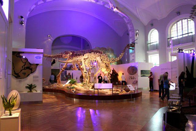 Luonnontieteellinen museo #helsinki #finland