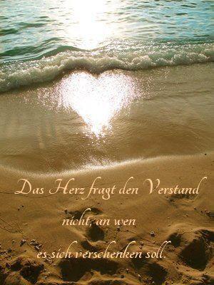 El corazón no le pregunta al entendimiento, a quien debe entregarse ❤️