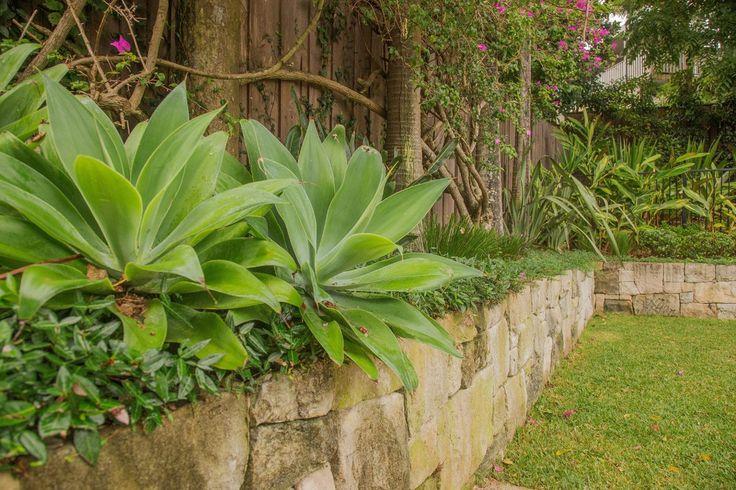 Cremorne - formed gardens