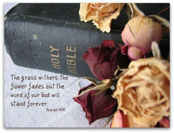 """The grass withers, the flower fades but the word of our God will stand forever."" - Isaiah 40:8:"