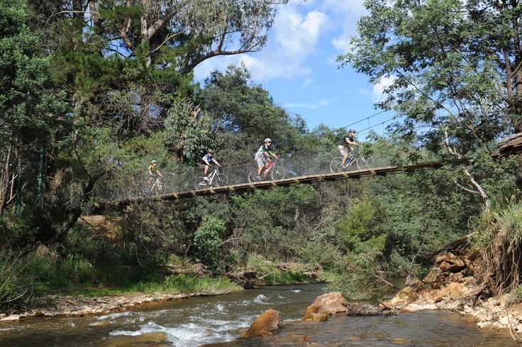 Mountain Biking near Bright, Victoria #Australia via http://fiveofthebest.com/portfolio/mountain-biking/#!prettyPhoto