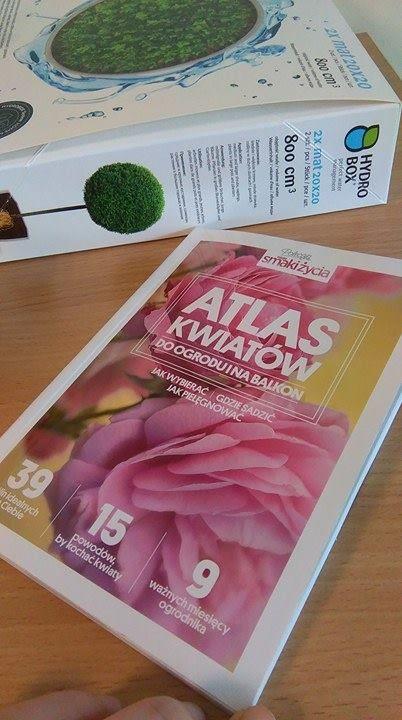 Atlas kwiatów - wiedzy na temat kwiatów nigdy za wiele! :) #hydrobox #hydroboxpl #kwiaty #flowers #flowerpot #atlaskwiatow #nawadnianie #wiosna #spring #sadzenie #kwiatydoniczkowe #balkon #taras #ogrod #inspiracje #florystyka #diy #inspirations