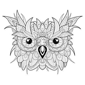 Colorear Bho Posado En Rama Aves Dibujo Para Colorear