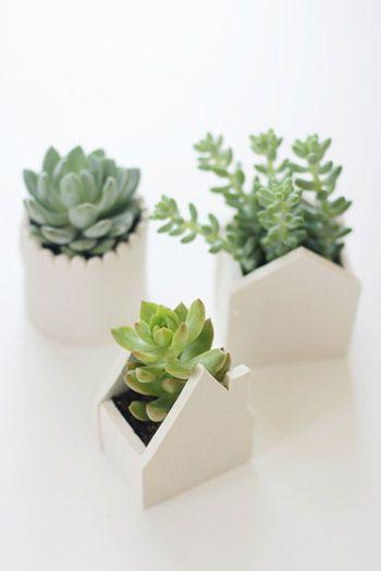 DIY Mini Clay Planters
