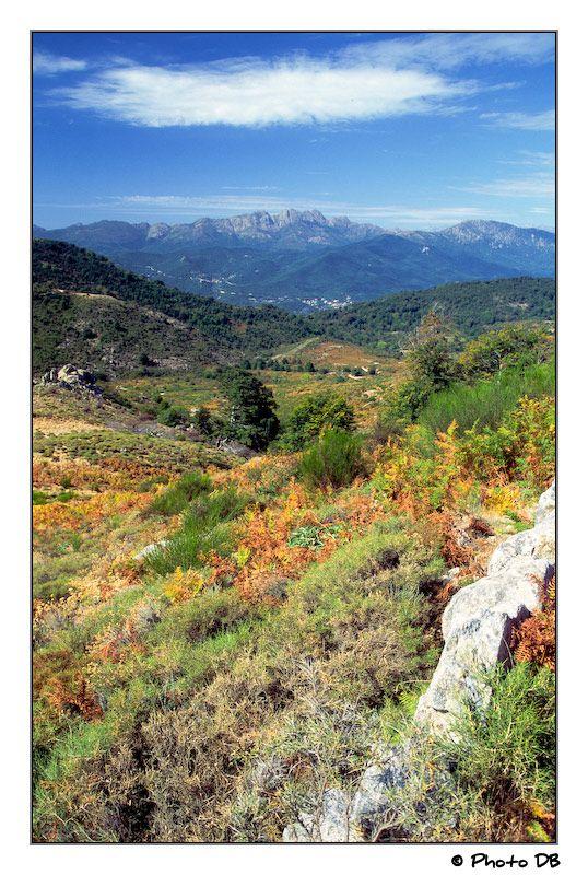 Le maquis Corse par DavidCanon Je me souviens de l'odeur du maquis - un mélange d'herbes - que j'ai pris le train inter-montagne