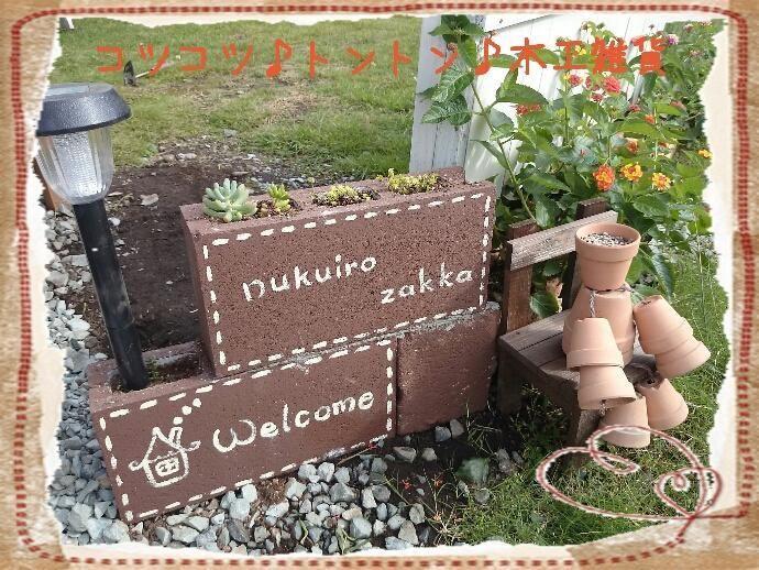 多肉植物 コンクリートブロック 多肉植物 コンクリートブロック 庭飾り