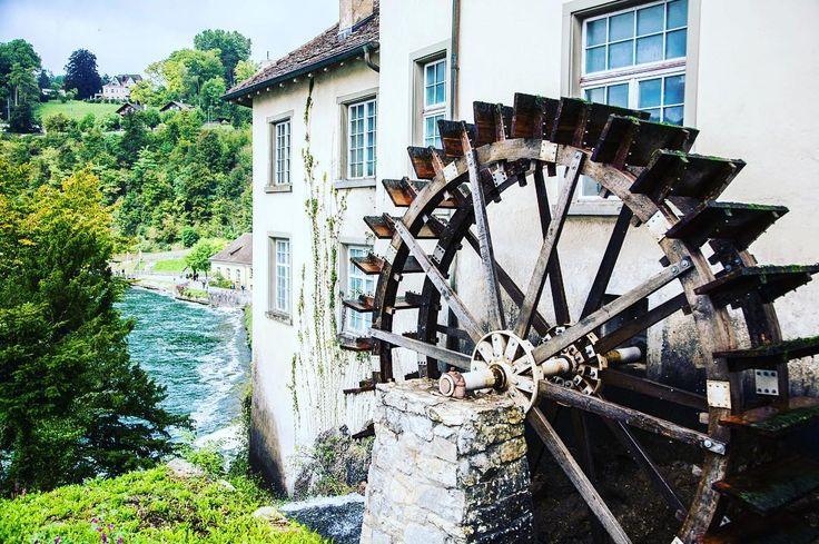 Watermill wheel on the shore of Rhine near the powerful Rhine Falls . . . #watermill #rheinfall #schaffhausen #switzerland #schweiz #travelcommunity #timeoutsociety #teamwanderlust #welivetoexplore #wearetravelgirls #wonderful_places #beautifuldestinations #travel_drops #exceptional_pictures #speechlessplaces