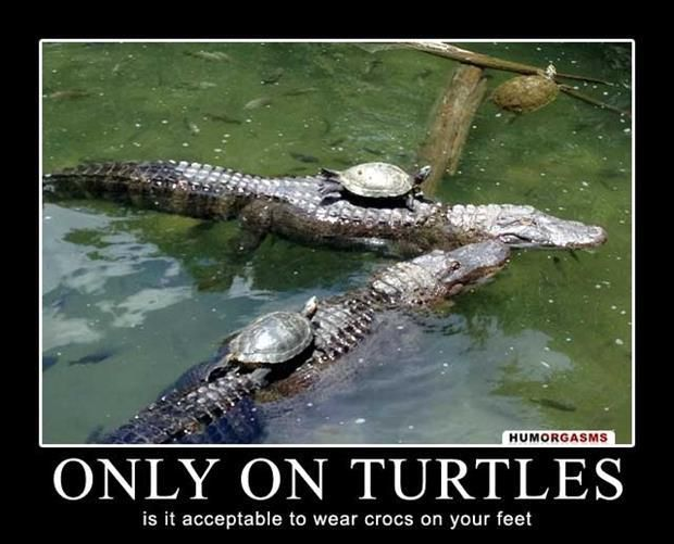 When Crocs are acceptable --> Dump A Day Demotivational Posters Of The Week - 60 Pics