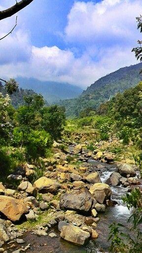 Lembah Mandalawangi