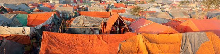 Antonio Guterres raises alarm as hunger crisis worsens