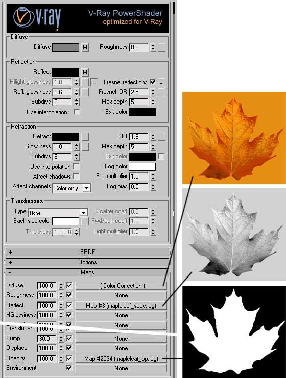 VRay.info   Tutorial: Making Leaf Materials with V-Ray