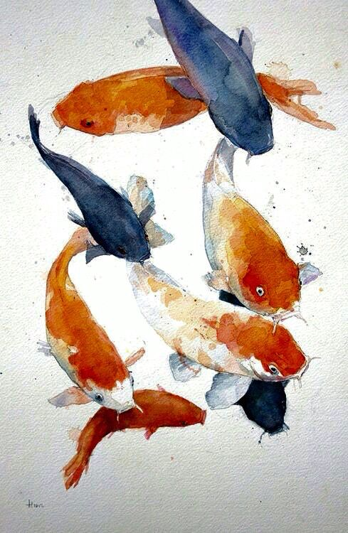 24 best art sarah lamb images on pinterest sarah lamb for How much are koi fish worth