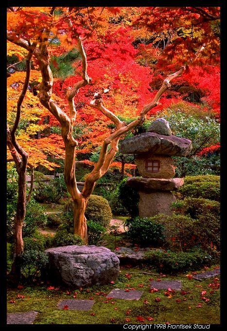 A stone lantern, Japan