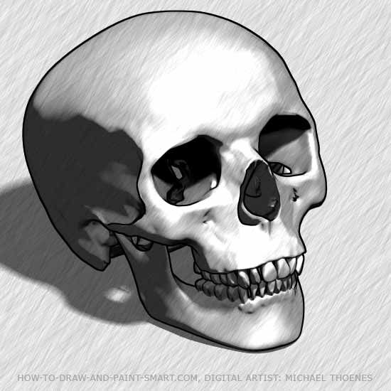 how to draw a skull step by step for beginners