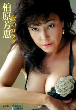 柏原芳恵 - Google 検索