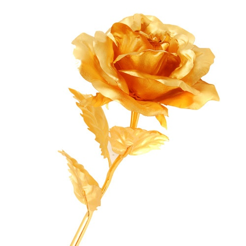24K Gold Plated Rose / zlata ruze $73