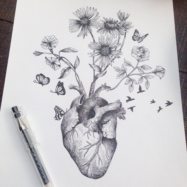 Habitat heart © Alfred Basha