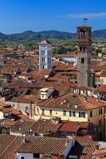 Church towers, Lucca, Tuscany, Italy