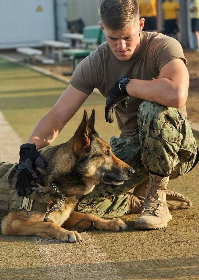 Today's Real Life Hero, both four legged and two legged. :)