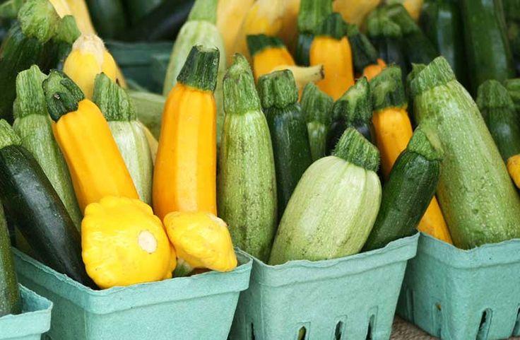 Grilled Zucchini Salad - Ottawa Farmers' Market